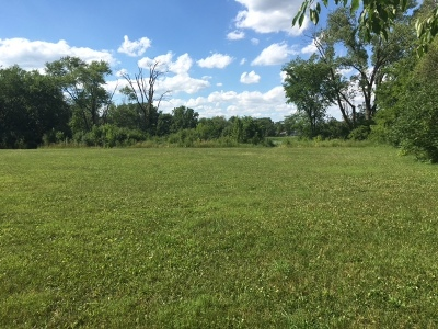 Tinley Park Residential Lots & Land For Sale: 6850 West 179th Street