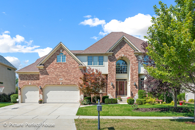 Naperville Single Family Home For Sale: 3147 Landore Drive