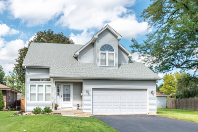 Villa Park Single Family Home New: 206 East Oak Street