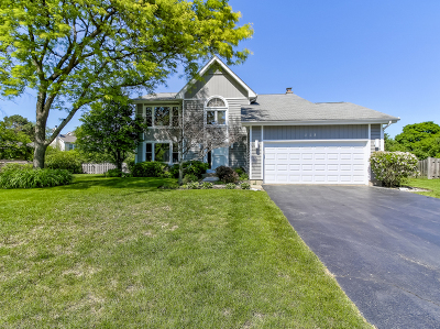 Buffalo Grove Single Family Home New: 115 Old Barn Court