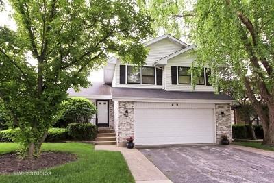 Wheeling Single Family Home New: 619 Cherrywood Drive