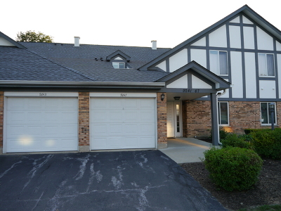 Orland Park Condo/Townhouse New: 9243 Montgomery Drive #9243