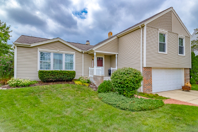 Schaumburg Single Family Home For Sale: 2117 Berry Court