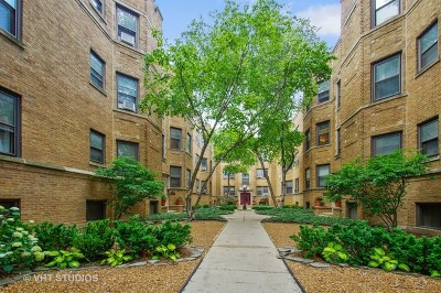 Condo/Townhouse New: 536 West Cornelia Avenue #2S