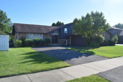 South Holland IL Single Family Home New: $165,000