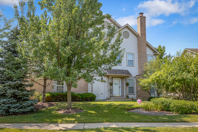 Hoffman Estates Condo/Townhouse For Sale: 5475 McDonough Road