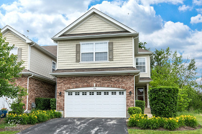 Roselle Condo/Townhouse For Sale: 559 Bobby Ann Court
