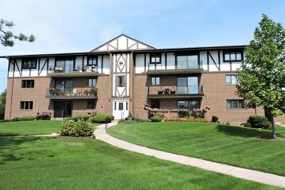 Palos Heights, Palos Hills Condo/Townhouse New: 11018 South Theresa Circle #1A