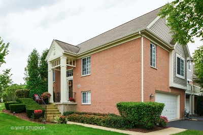 Orland Park Condo/Townhouse New: 9402 141st Street