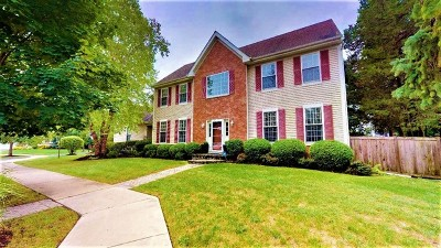 Lake Zurich Single Family Home New: 30 Carolyn Court