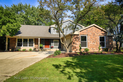 Naperville Single Family Home New: 1549 Aztec Circle