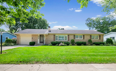 West Dundee Single Family Home For Sale: 809 Royal Lane