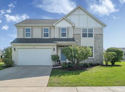 Joliet, Shorewood Rental New: 612 Northgate Lane