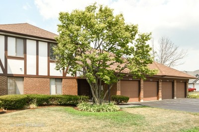 Orland Park Condo/Townhouse New: 9128 Sutton Court #2ND