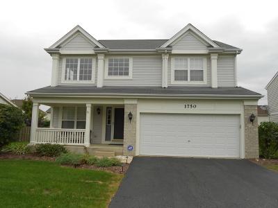 Kane County Single Family Home New: 1750 Newbridge Circle