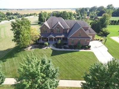 Plainfield Single Family Home For Sale: 25865 West Prairie Hill Lane