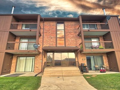 Tinley Park Condo/Townhouse New: 7537 175th Street #534