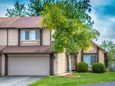 Buffalo Grove Condo/Townhouse New: 534 Lasalle Court