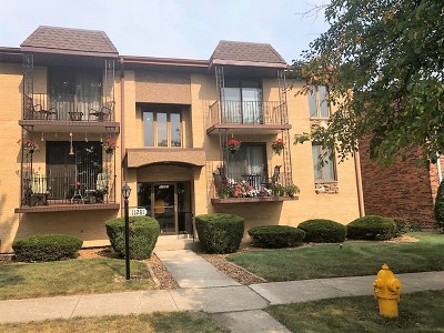 Palos Heights, Palos Hills Condo/Townhouse New: 11281 South Roberts Road #J