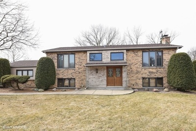 Wood Dale Single Family Home New: 464 Mulberry Lane