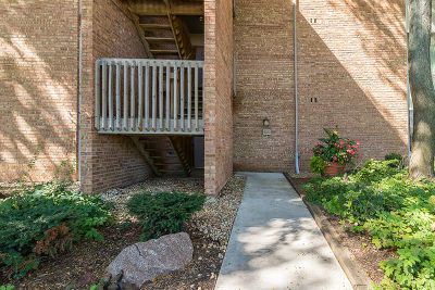 Lisle Condo/Townhouse New: 6020 East Lake Drive #1B
