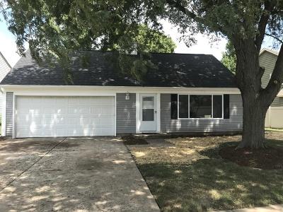 Naperville Single Family Home New: 1811 Paddington Avenue