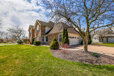 Naperville Single Family Home For Sale: 4136 Cave Creek Court