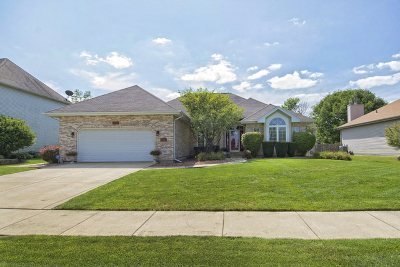 Plainfield Single Family Home New: 13340 Vicarage Drive