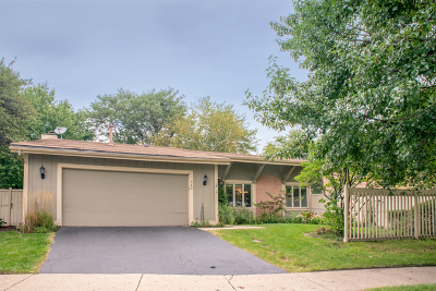Roselle Single Family Home Contingent: 542 Bryce Trail