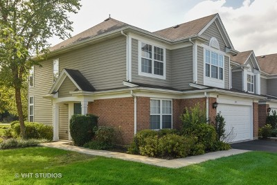 Palatine Condo/Townhouse New: 381 South Crown Court