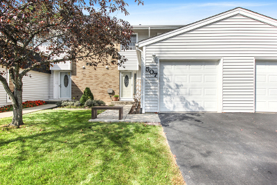 Bolingbrook Condo/Townhouse New: 507 Julie Road #507