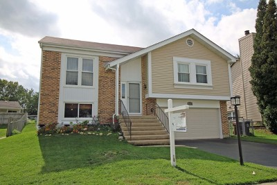 Roselle Single Family Home For Sale: 703 Radnor Drive