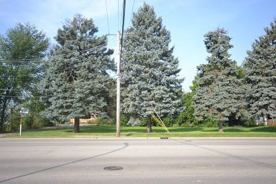 Kane County Residential Lots & Land New: 242 South McLean Boulevard
