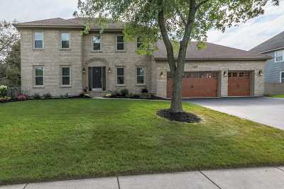 Naperville Single Family Home For Sale: 2260 River Woods Drive