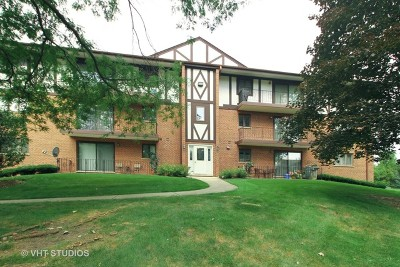 Palos Heights, Palos Hills Condo/Townhouse New: 10845 South 84th Avenue #3A