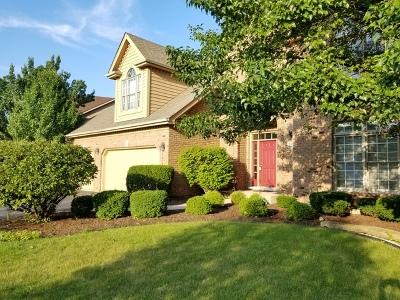 Naperville Single Family Home For Sale: 2288 Glouceston Lane