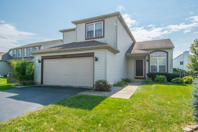 Plainfield Single Family Home New: 5312 Brindlewood Drive