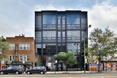 Condo/Townhouse For Sale: 1409 North Ashland Avenue #2N