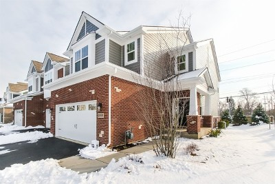 Du Page County Condo/Townhouse Price Change: 1999 Fiona Lot 01.03 Lane