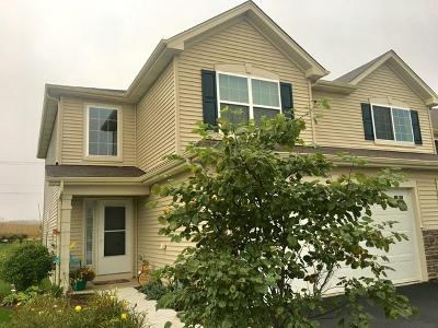 Kane County Single Family Home New: 1235 Da Vinci Drive
