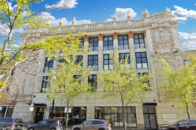 Condo/Townhouse New: 1635 West Belmont Avenue #216