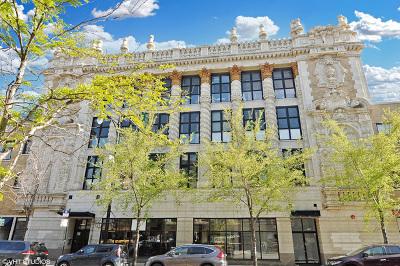 Chicago Condo/Townhouse New: 1635 West Belmont Avenue #216