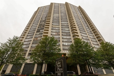 Condo/Townhouse New: 3930 North Pine Grove Avenue #1601