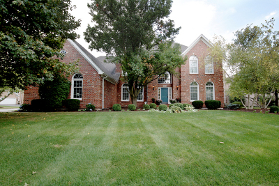 Naperville Single Family Home For Sale: 3523 Monarch Circle