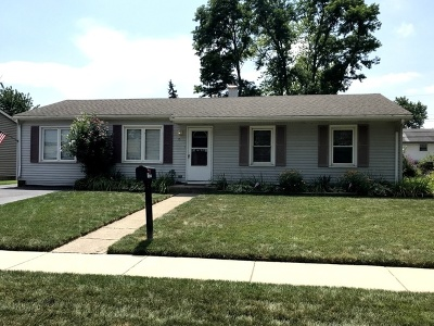 Romeoville Single Family Home New: 15 Dover Avenue