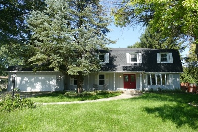 Naperville Single Family Home New: 28w462 Leverenz Road