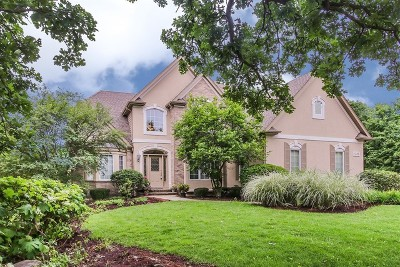 Du Page County Single Family Home New: 1195 Litchfield Lane