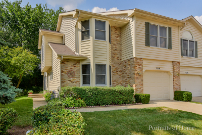 Naperville Condo/Townhouse New: 1119 Dickens Avenue
