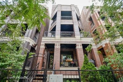 Chicago Condo/Townhouse New: 1047 West Monroe Street #3NTIF