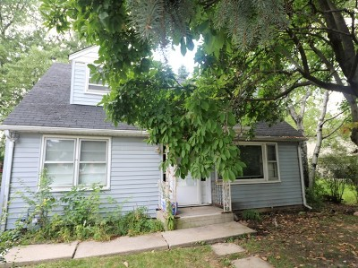 Naperville Single Family Home New: 959 North Loomis Street